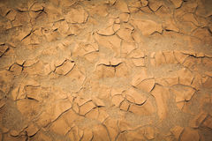 Dry soil background Stock Photo