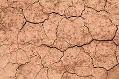 Dry soil background. Close up dry soil background Royalty Free Stock Images