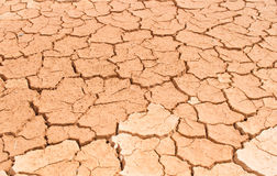 Dry soil. Background  color asian Stock Photos