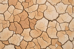 Dry soil. Background  color asian Royalty Free Stock Photos