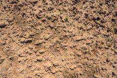 Dry soil closeup before rain Stock Photos