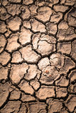 Dry soil with crack Royalty Free Stock Image