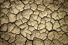 Dry soil with crack Stock Image