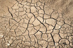 Dry soil with crack Stock Photo