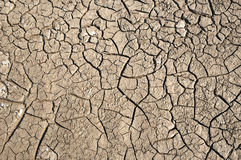 Dry soil with crack Royalty Free Stock Images