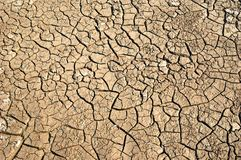 Dry soil  with crack Stock Photography