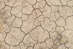 Dry soil cracked earth texture Stock Images