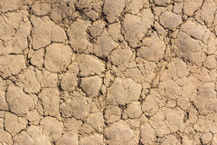 Dry soil cracked earth texture stock photo