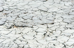Dry soil. Cracked soil dry earth texture,background stock photography