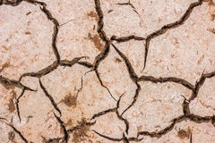 Dry soil cracked earth texture stock image