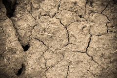 Dry soil cracked earth texture vintage fillter. Dry soil cracked earth texture royalty free stock photo