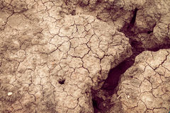 Dry soil cracked earth texture vintage fillter. Dry soil cracked earth texture royalty free stock image