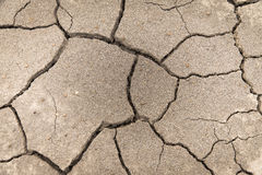 Dry soil cracked earth texture vintage fillter. Dry soil cracked earth texture stock images