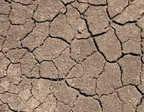Dry soil with cracks Royalty Free Stock Images