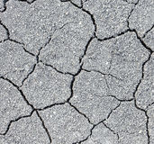 Dry soil cracks Royalty Free Stock Image