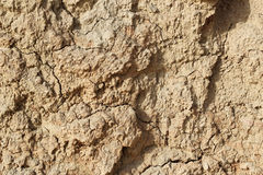 Dry soil Stock Photos