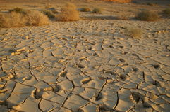 Dry soil - ecology disaster. Dry soil - no water - desert land - ecology problems Royalty Free Stock Image