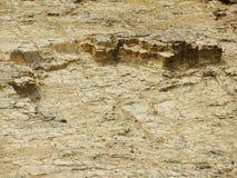 Dry soil for erosion. Dry soil for erosion in a mountain Stock Image