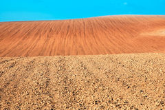 Dry soil. Stock Photo