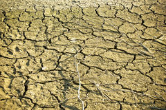 Dry soil in lake bottom during dryness Stock Images