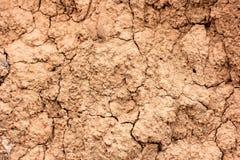 Dry soil. Stock Image