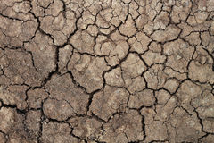 Dry soil for pattern and background Royalty Free Stock Photography