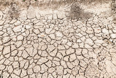 Dry soil surface. Royalty Free Stock Images