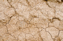 Dry soil texture Stock Image