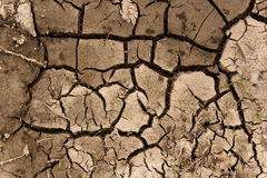 Dry soil texture Stock Photos