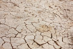 Dry soil texture Stock Photography