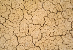 Dry soil. Stock Photo