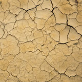 Dry soil texture. Crack and dry soil texture stock photography