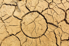 Dry soil texture on the ground Stock Photos