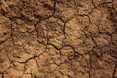 Dry soil texture. On the ground Stock Photos