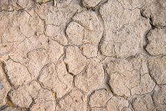 Dry soil. Texture on the ground Royalty Free Stock Photo
