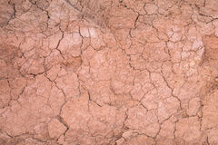 Dry soil texture on the ground Royalty Free Stock Images