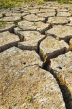 Dry soil texture on the ground. Royalty Free Stock Images