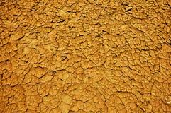 Dry sole texture Stock Photo