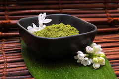Dry spa mud and green leaf royalty free stock images