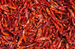 Dry spice chili peppers background in asia market Stock Photography