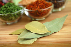 Dry Spices. Glass containers with saffron, mustard seed, black pepper and chive and a bottle of mixed pepper, and laurel leaves on a wooden cutting desk Royalty Free Stock Photography