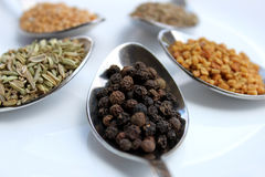 Dry Spices, Black Pepper Close Up View Royalty Free Stock Photo