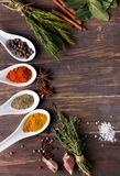 Dry spices and green herbs Stock Photos