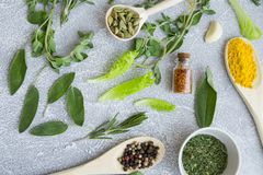 Set of spices and herbs on light stone background. Dry spices and herbs in wooden spoons, glass jars and bowls, with fresh herb springs, chili pepper and garlic Stock Photos