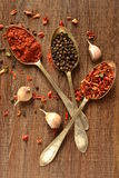 Dry spices in old spoons Royalty Free Stock Photos