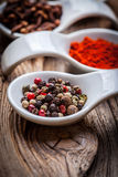 Dry spices in spoon. Royalty Free Stock Images