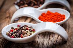 Dry spices in spoon. Royalty Free Stock Image