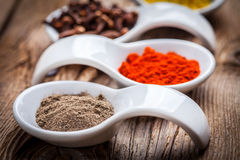 Dry spices in spoon. Royalty Free Stock Photo