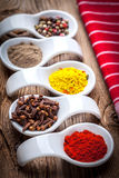 Dry spices in spoon. Stock Photos