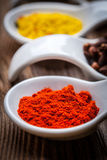 Dry spices in spoon. Stock Image